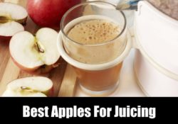 5 Best Apples For Juicing: Pick These!