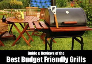 Best Budget Grills For Barbeque