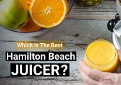 5 Best Hamilton Beach Juicers To Buy In 2021
