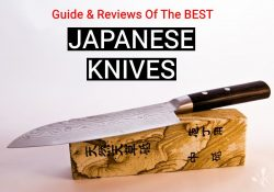 Top 9 Best Japanese Knives To Buy In 2021