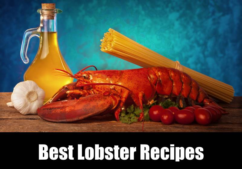 Best Lobster Recipes