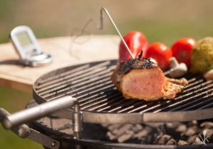 Best Meat Thermometer Reviews & Buying Guide