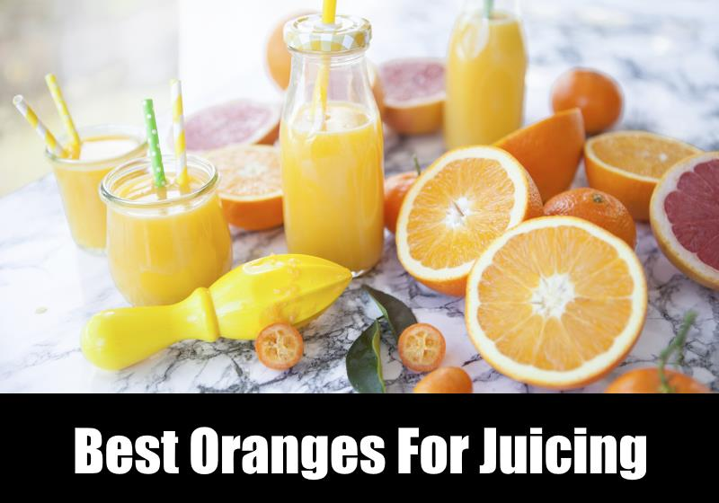 best oranges for juicing