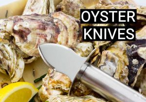 10 Best Oyster Knives For Shucking In 2021
