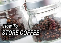 How To Store Coffee – The Best Way For Storing Beans & Grounds