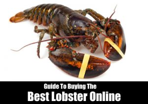 Best Lobster Online: Buying Guide