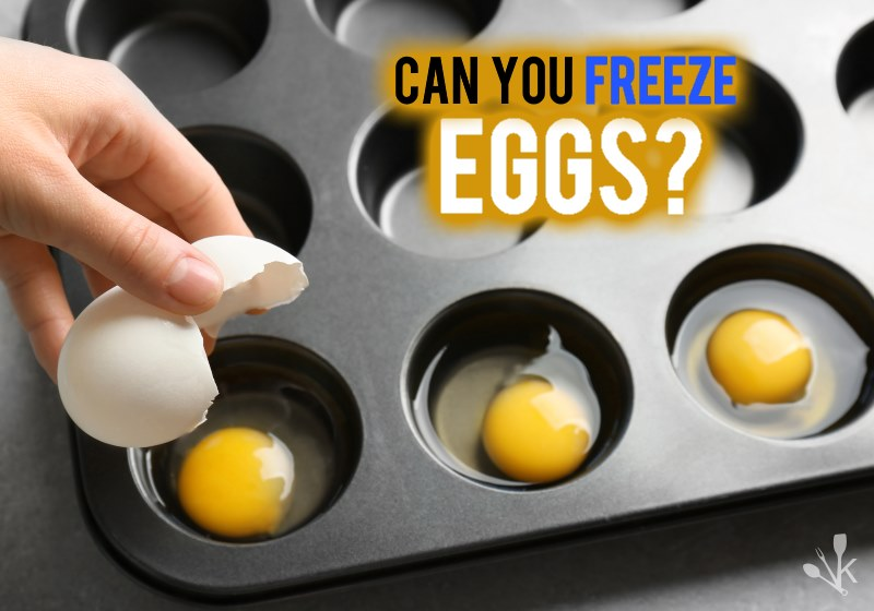 Can eggs be frozen?