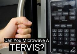Can You Microwave A Tervis?