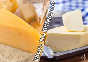 Cheese vs Butter: The Milk Difference