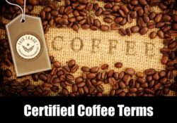 Certified Coffee Terms