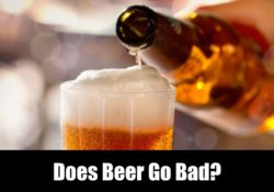 Does Beer Go Bad? How Long Does It Last?