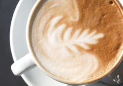 A Flat White Is Not A Latte Or Cappuccino!