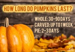 How Long Do Pumpkins Last? Whole, Carved, Seeds and Pie