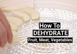 How To Dehydrate Meat, Fruit & Vegetables