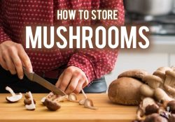 How To Store Mushrooms (Best Way To Keep Fresh)