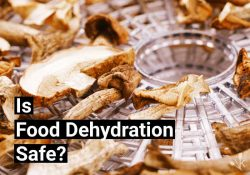 Is Food Dehydration Safe? How Does It Work?