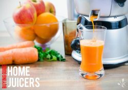 Top 10 Best Juicers For Home To Buy In 2021