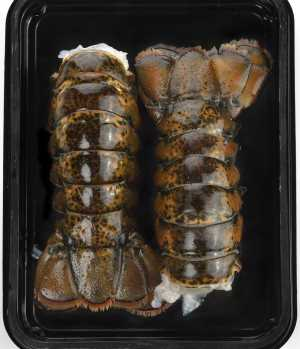 thawing lobster tails