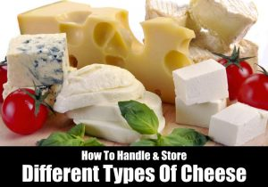 Types of Cheese And How To Store Them