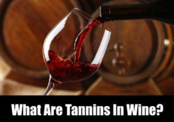 What Are Tannins In Wine?