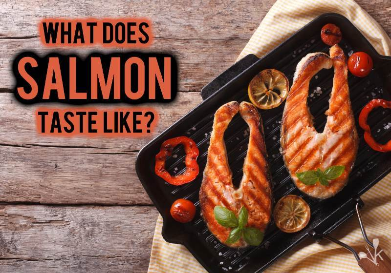 what does salmon taste like